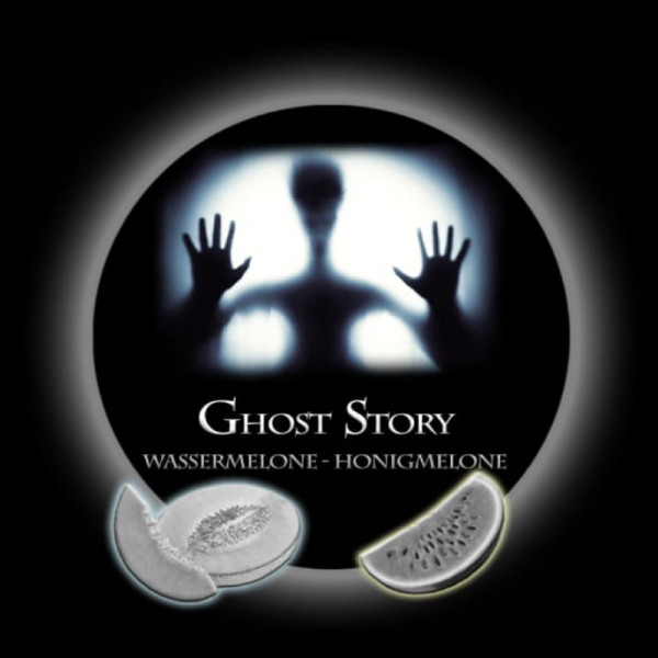 Paranormal Liquidity Molasse 20 ml - Ghost Story